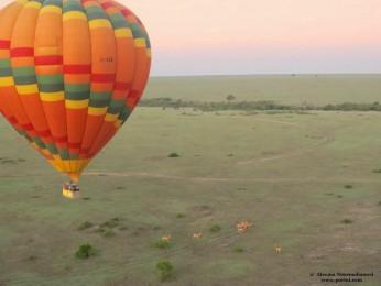hot-air-ballon-maasai-mara
